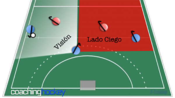 The player with the ball can see on his left side but is unaware of what's happening on the right side.