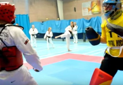 Hockey goalie versus taekwondo!