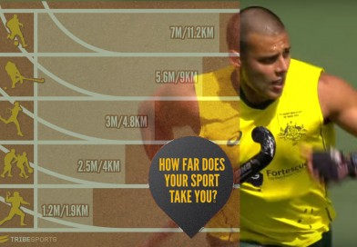How much does a hockey player run in average and compared to other sports?